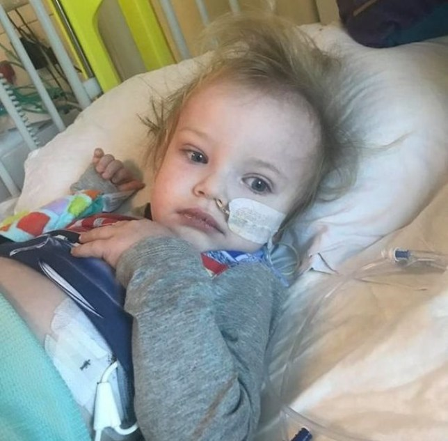 "Heartless burglars made off with more than ?1,300 from a fund to help a toddler fighting cancer. Brave Jacob Jones (pictured) is battling a rare form of the disease and needs ?250,000 for specialist treatment in America. But thieves stole from a fundraising pot kept for him at a golf club - and Jacob's parents have labelled them ""scum"". ? WALES NEWS SERVICE"