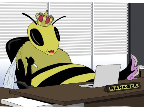 Evolution or sexism: Why are so many female bosses 'queen bees'?