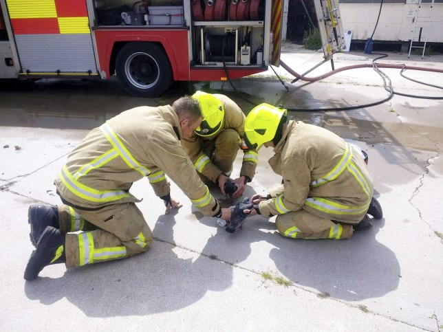 The pigeons being given oxygen by the firefighters after they were recued from a fire in Colchester, Essex. See Masons copy MNPIGEON: This is the extraordinary moment hardened firefighters try to revive a PIGEON which had passed out after inhaling smoke from a blazing building. The firemen leapt into action to rouse a number of birds left unconscious after an arson attack on an abandoned bus depot. They fed the birds with drops of water and used a tube to administer oxygen having checked there were no humans in the former bus depot.