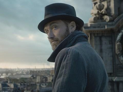 Harry Potter fans spot Dumbledore 'plot hole' in Fantastic Beasts: The Crimes Of Grindelwald