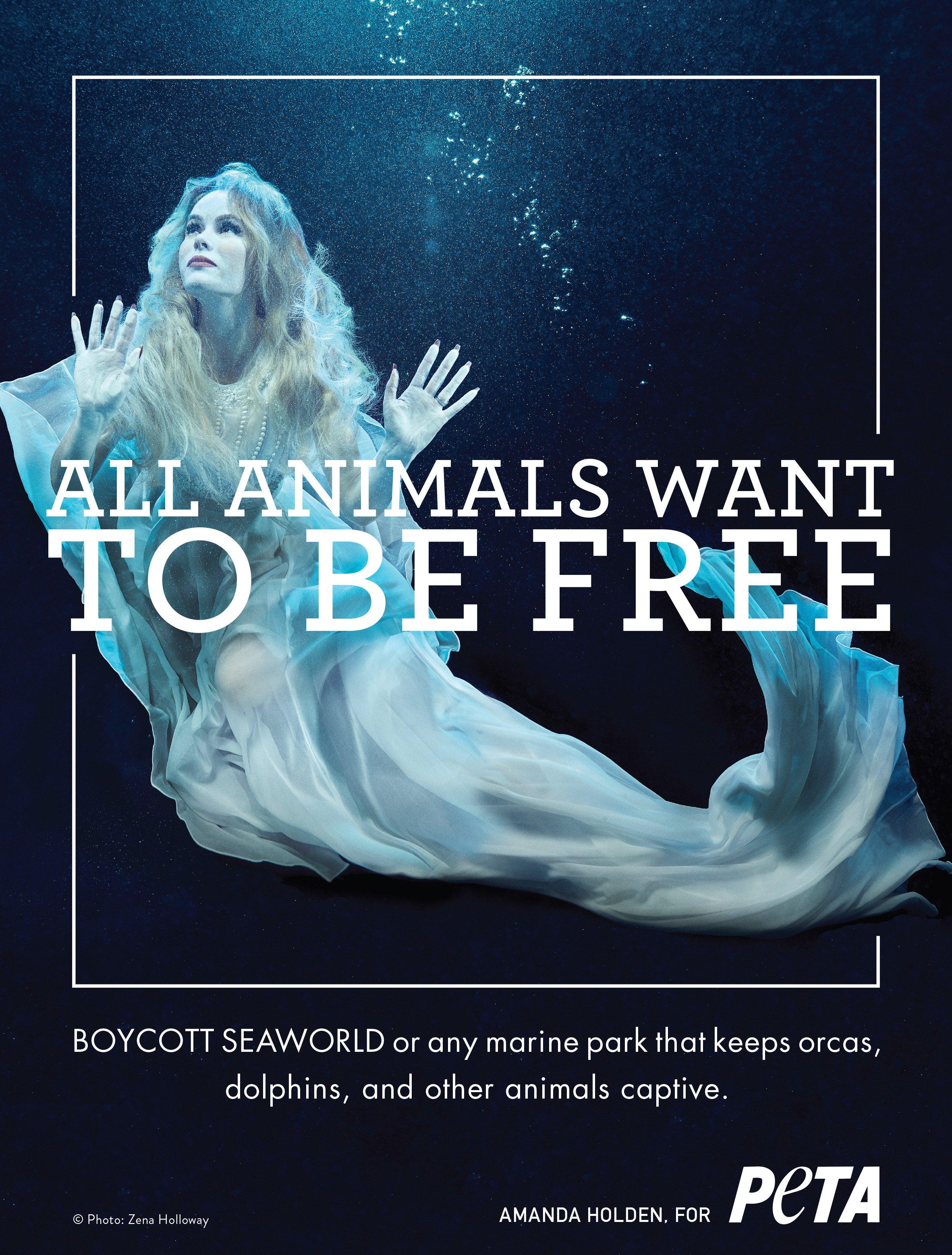 Amanda Holden became a mermaid for PETA (Picture: Peta/Zena Hollaway)