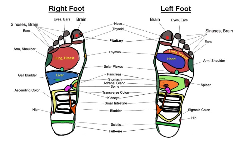 Reflexology: Your feet can tell more about your gut than you