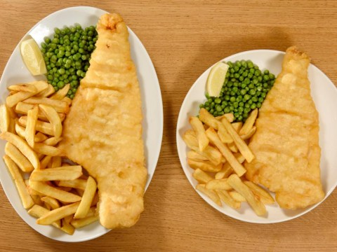 Morrisons launches a monster portion of fish and chips for £8.50