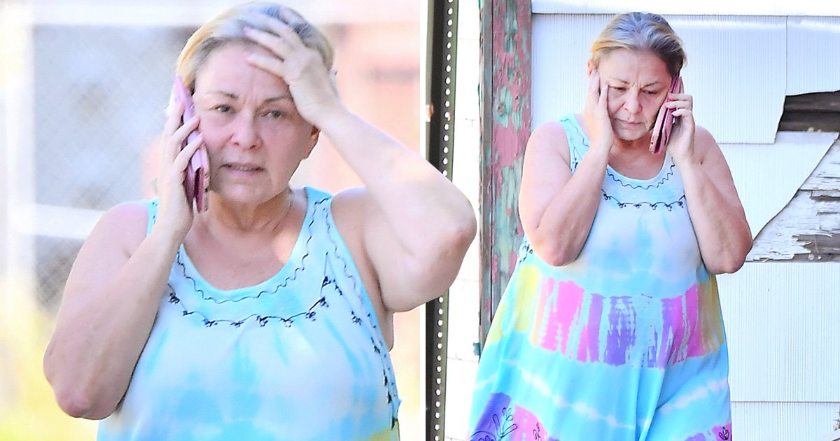 Roseanne Barr breaks down during tense phone call amid racist tweet controversy
