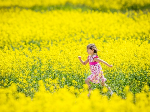 Can hay fever cause headaches?