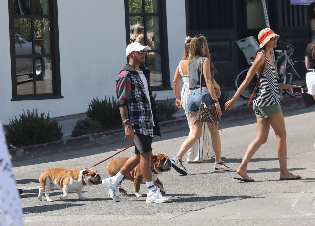 EXCLUSIVE: Lewis Hamilton picking up girls and dogs in Venice. 03 Jun 2018 Pictured: Lewis Hamilton picks up girls while walking his dogs in Venice and takes them to lunch at Butcher's daughter and joined by another male friend. Photo credit: MEGA TheMegaAgency.com +1 888 505 6342