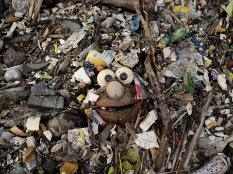 Mountains of waste to shame us all on World Environment Day