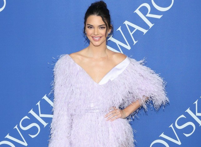 the 2018 CFDA Fashion Awards at Brooklyn Museum on June 4, 2018 in New York City. Featuring: Kendall Jenner Where: New York, New York, United States When: 05 Jun 2018 Credit: Andres Otero/WENN.com