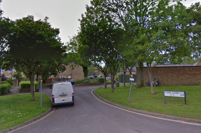 Turin Court, Andover Hampshire. Man found dead after woman was sexually assaulted as 21-year-old is arrested. (Picture: Google)