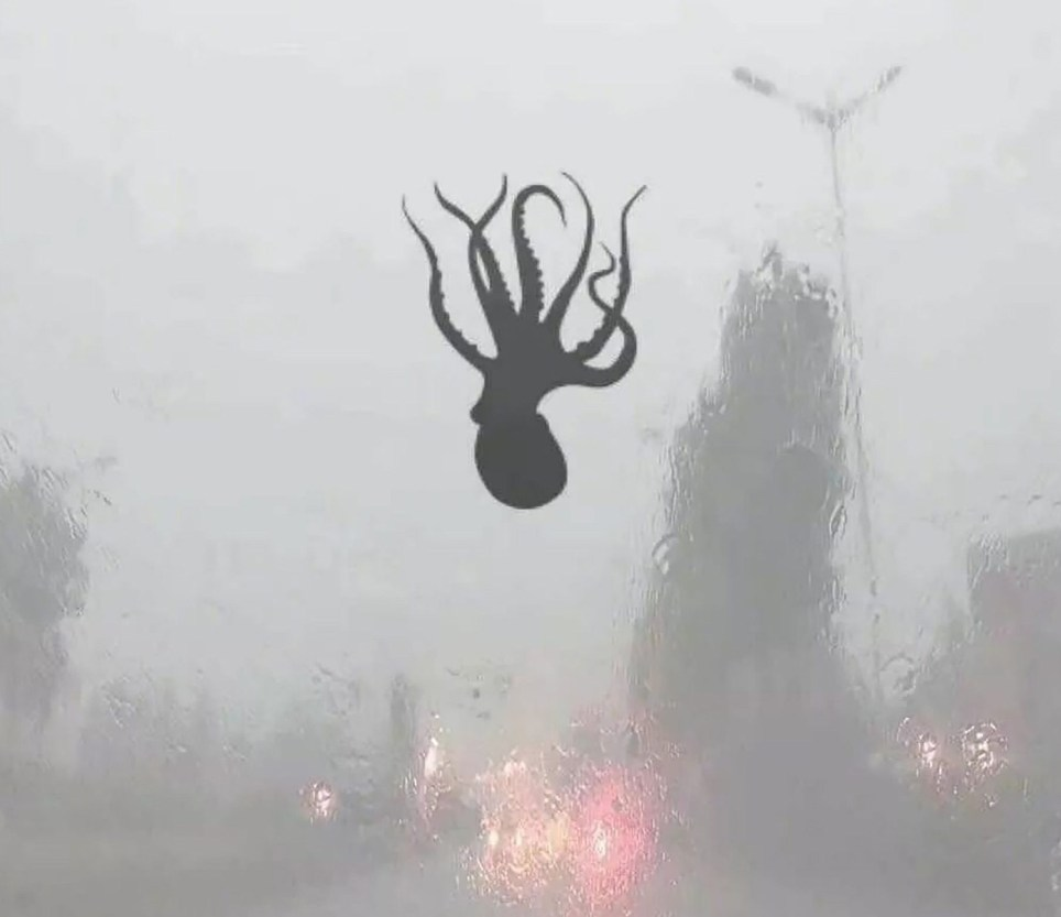 Pic shows: Marine creatures were seen resting on windscreens during and after the storm These incredible images show a freakish storm that sent marine creatures like octopus and starfish raining down on cars in a coastal Chinese city. The phrase ???seafood rain??? became a trending topic on social media after images from the city of Qingdao in East China???s Shandong Province showed different creatures stuck to car windscreens after the rainstorm. According to the Qingdao Meteorological Administration, violent weather was recorded in the late afternoon of 13th June, including hurricane-force winds blowing at a shocking 34.8 m/s - registering a 12 on the Beaufort scale. The hellish gale, which was coupled with hail too, caused widespread destruction throughout the city, images of the aftermath show. However, the storm is also believed to have caused waterspouts in the Yellow Sea, which are one explanation for how sea creatures such as shrimp, octopus, starfish and mollusks could have been carried out of the ocean and into the city streets. An amusing snap also showed a 100-RMB (11.7-GBP) banknote stuck to one driver???s windscreen. The city???s meteorological service said the wind speeds generated during the storm set a new all-time record for June.