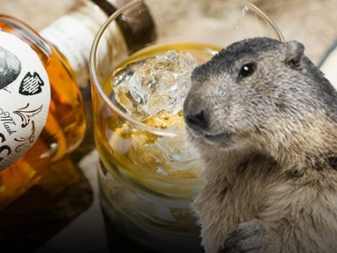 You can now buy whiskey that's been flavoured with actual beaver butt juice