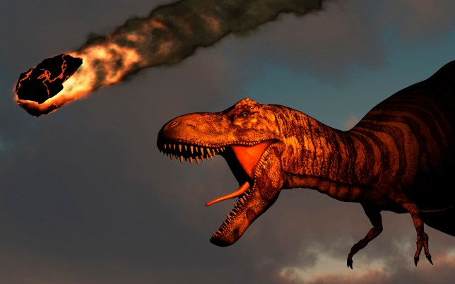 What killed the dinosaurs? New clues point finger at killer asteroid