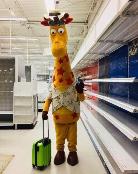 Toys R Us giraffe leaving store for the last time is incredibly depressing METRO GRAB taken from: https://twitter.com/beaniegigi/status/1012368876791828480 Credit: Gina Martin/Twitter