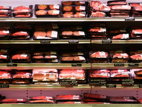 Meat isn't just murder, it could mean Armageddon: Why you should become vegan now