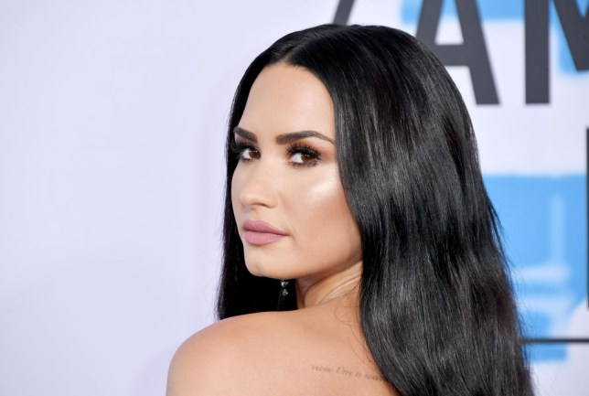 Demi Lovato History Of Drugs Alcohol And Mental Health After