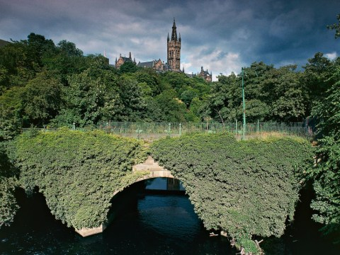 Glasgow's trees are saving the city's life