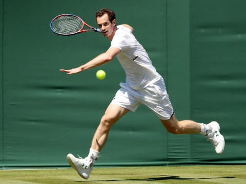 Andy Murray faces dramatic rankings slide as he considers schedule change
