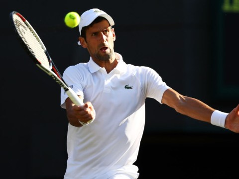 Novak Djokovic destroys Tennys Sandgren to announce himself at Wimbledon