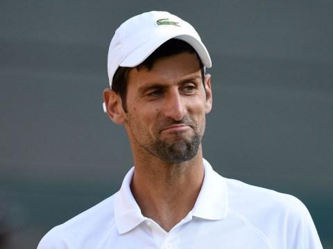 Novak Djokovic rises above John McEnroe to join elite Wimbledon club