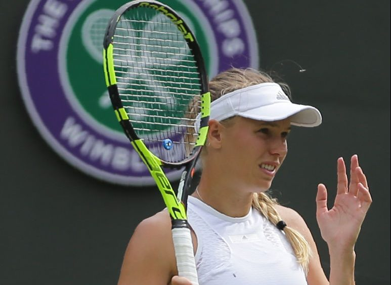 Flying ants attack Caroline Wozniacki during Wimbledon match