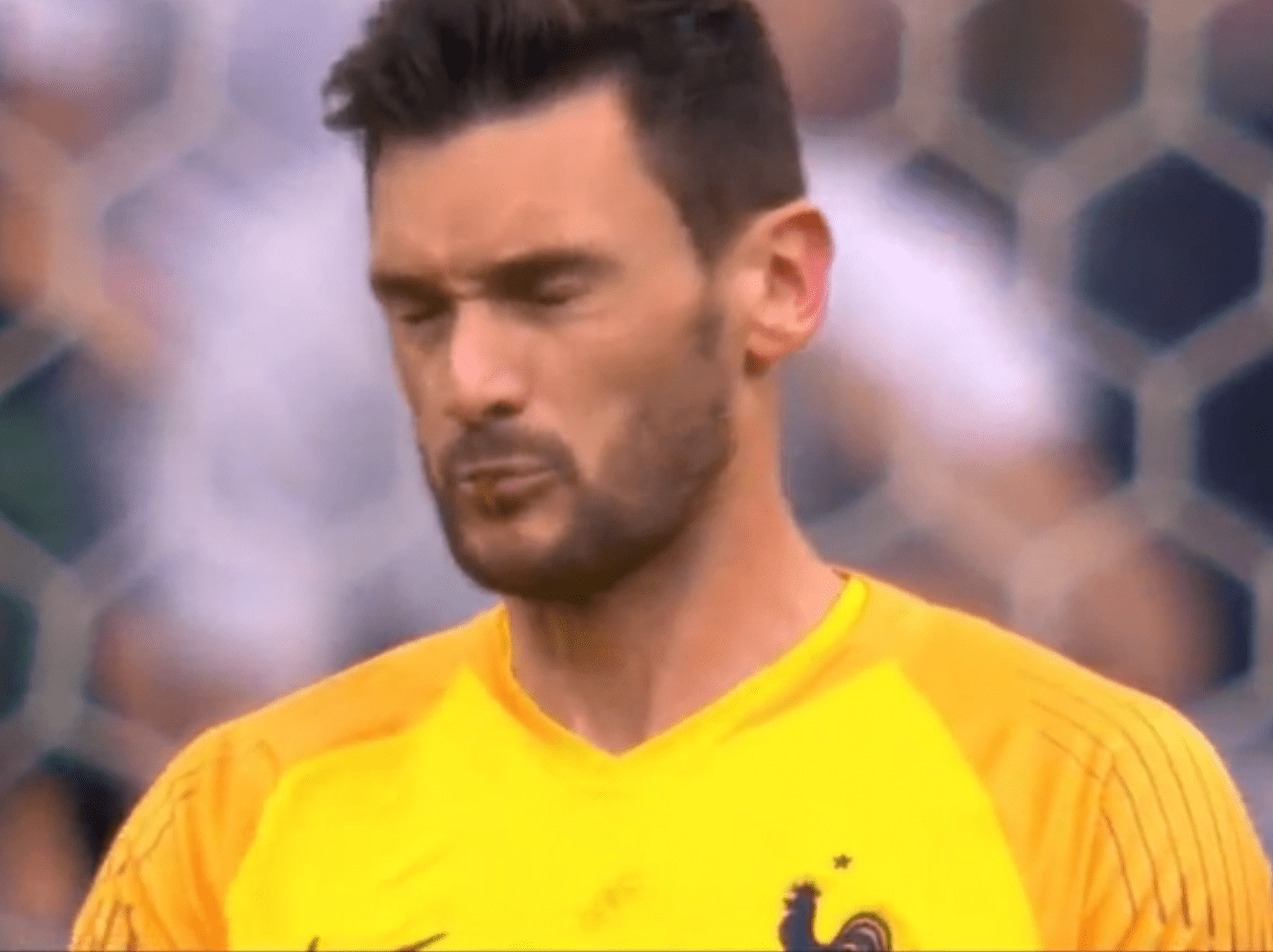 Hugo Lloris almost swallows live dragonfly during France's clash with Uruguay
