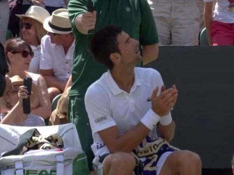 Novak Djokovic rages at umpire during Wimbledon quarter-final – and John McEnroe agrees