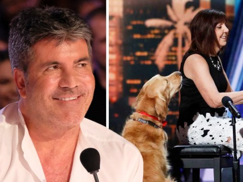 Simon Cowell's dreams come true on America's Got Talent as he finally gets to judge a singing dog