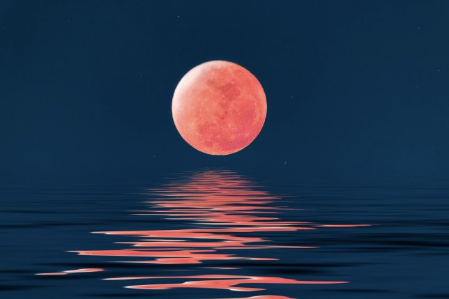 Will the blood moon affect your mood? | Metro News