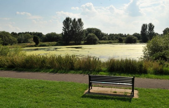 Police are hunting a sex beast who tried to rape a girl of 11 in a popular park at knifepoint. Extra officers were on patrol at Babbs Mill Park in Solihull after the horrific attack , which happened between 2.30pm and 2.50pm last Friday. Caption: Babbs Mill Lake.