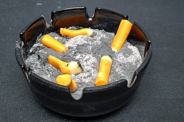 PICS BEN CHURCHILL / CATERS NEWS - (PICTURED: Dessert replicates filled cigarette tray.) A talented chef who has grown bored of conventional desserts has started serving up dishes that look purposely unappetising - testing the boundaries of peoples palate.Ben Churchill, 31, has created unorthodox masterpieces that appear to look like a used ashtray, a soapy washing up sponge and even a moulding orange to encourage people to think outside of the box - taking from one day to six months to create each masterpiece. The British chef, who is based on the outskirts of London, UK, fills his diners with not only tasty puddings but also apprehension and confusion - claiming that every dish is edible and perfectly balanced in flavour. He shows how he brings the dishes to life by using ingredients such as bubblegum meringue dust (which replicates the mould of an orange) to modeling chocolate and syrup that appear to look like cigarette butts. - SEE CATERS COPY