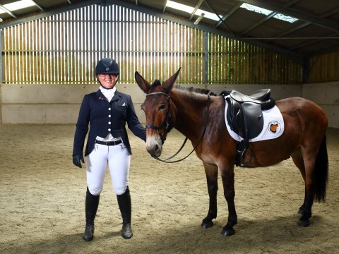 Wallace can now compete in competitions after British Dressage Club lifts ban on mules