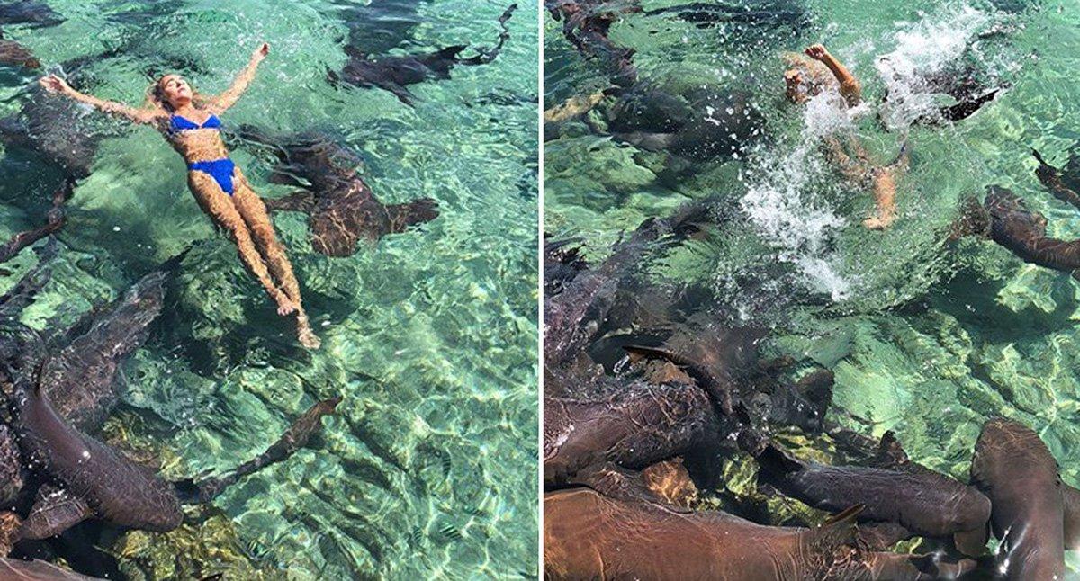Instagram Model Posing For Photo Amidst School Of Sharks Bitten By Shark