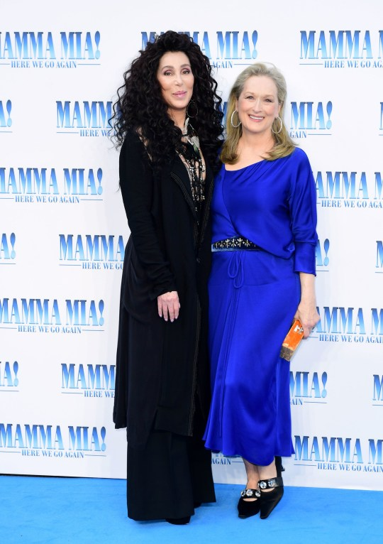 How much did Cher get paid for Mamma Mia! 2?   Metro News