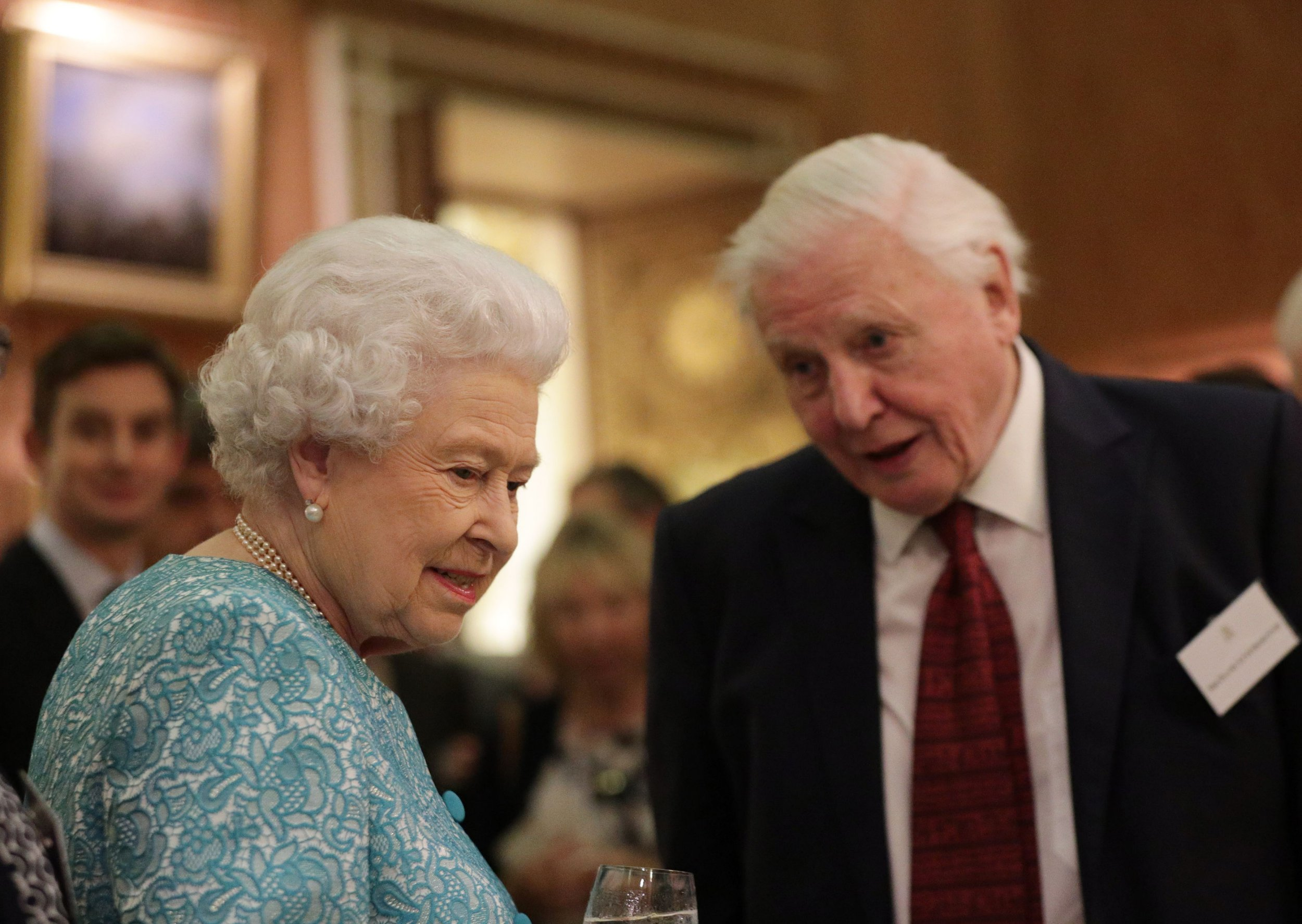 David Attenborough doesn't want to talk about the Queen – butterflies are more interesting