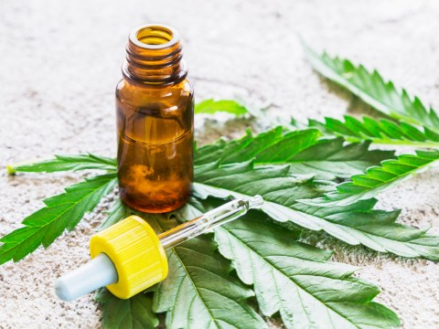 Medicinal cannabis to be available on prescription from autumn