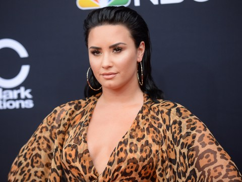 Plot foiled to burgle Demi Lovato's house as singer remains in rehab