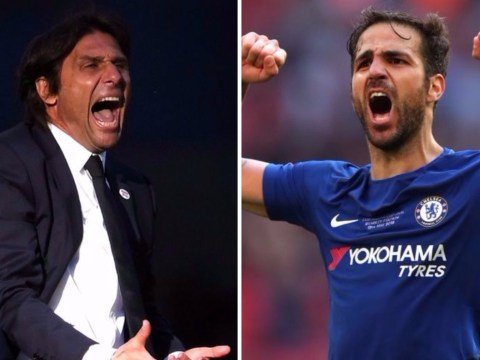 Chelsea star Cesc Fabregas celebrates Antonio Conte's sacking