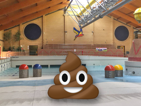 Horrified swimmers raced out in disgust after someone pooed in a pool