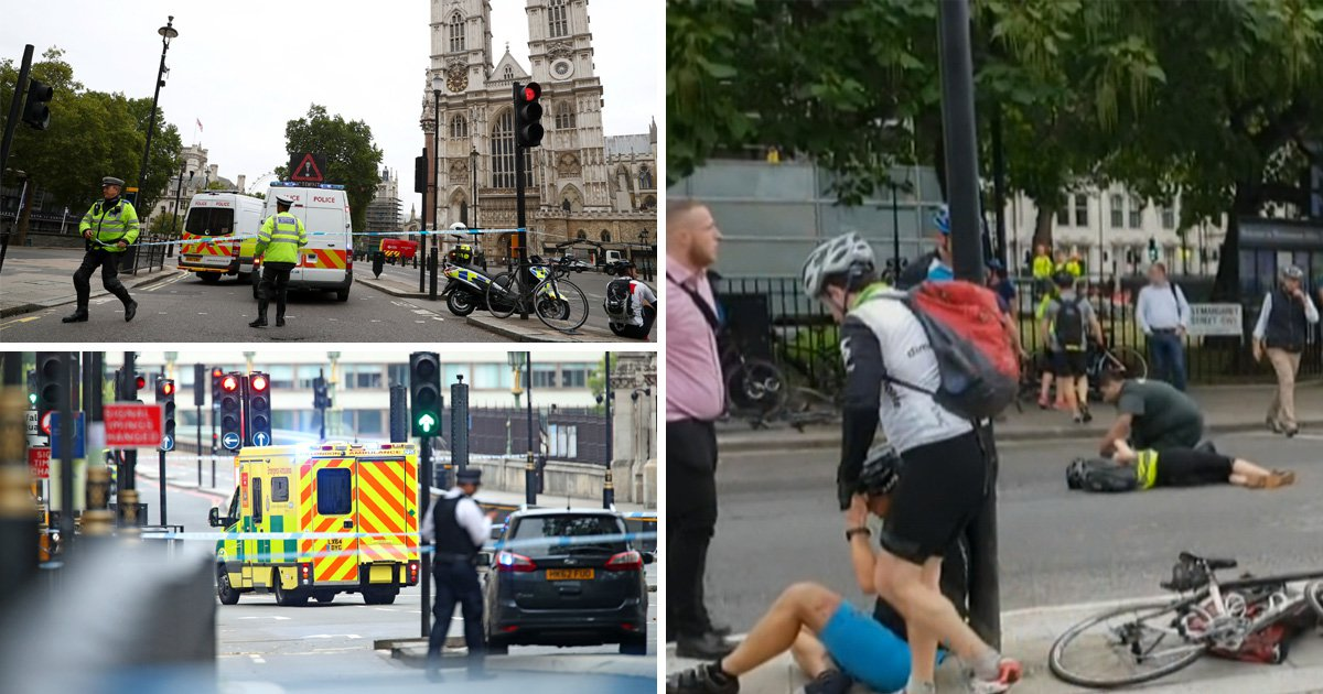 Man arrested on terror charges after car crashed into people outside Parliament