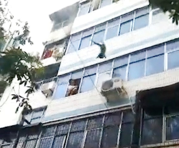 Pic shows: One of the kids jumps from the window of the burning apartment A mother in China has died shortly after she was seen in this video saving her two children by throwing them from the window of her burning 5th floor home to be caught by rescuers below. But the unnamed mother was unable to escape the blaze and was declared dead by doctors at Xuchang People???s Hospital in East China???s Jiangsu province. Footage of the blaze in Xuchang???s Weidu district shows pedestrians staring up at the woman standing in the window of her burning home, from which plumes of smoke are spewing into the air. The mum had screamed for help and threw blankets onto the street below, witnesses said. Passers-by grabbed the quilts and duvets and urged the woman to throw her children down to them. The video shows the woman mustering up all the strength left in her to drop first her nine-year-old son and then her three-year-old daughter, both of whom are caught by rescuers below. The blaze rages on as the woman lies out of breath at the top of the building, ultimately passing out on the windowsill. Reports said the woman???s children were taken to hospital and are in a stable condition. Her daughter suffered a broken leg during the rescue and is to undergo surgery. The hospital declared the mother dead after efforts to revive her were unsuccessful. The cause of the fire still unknown.