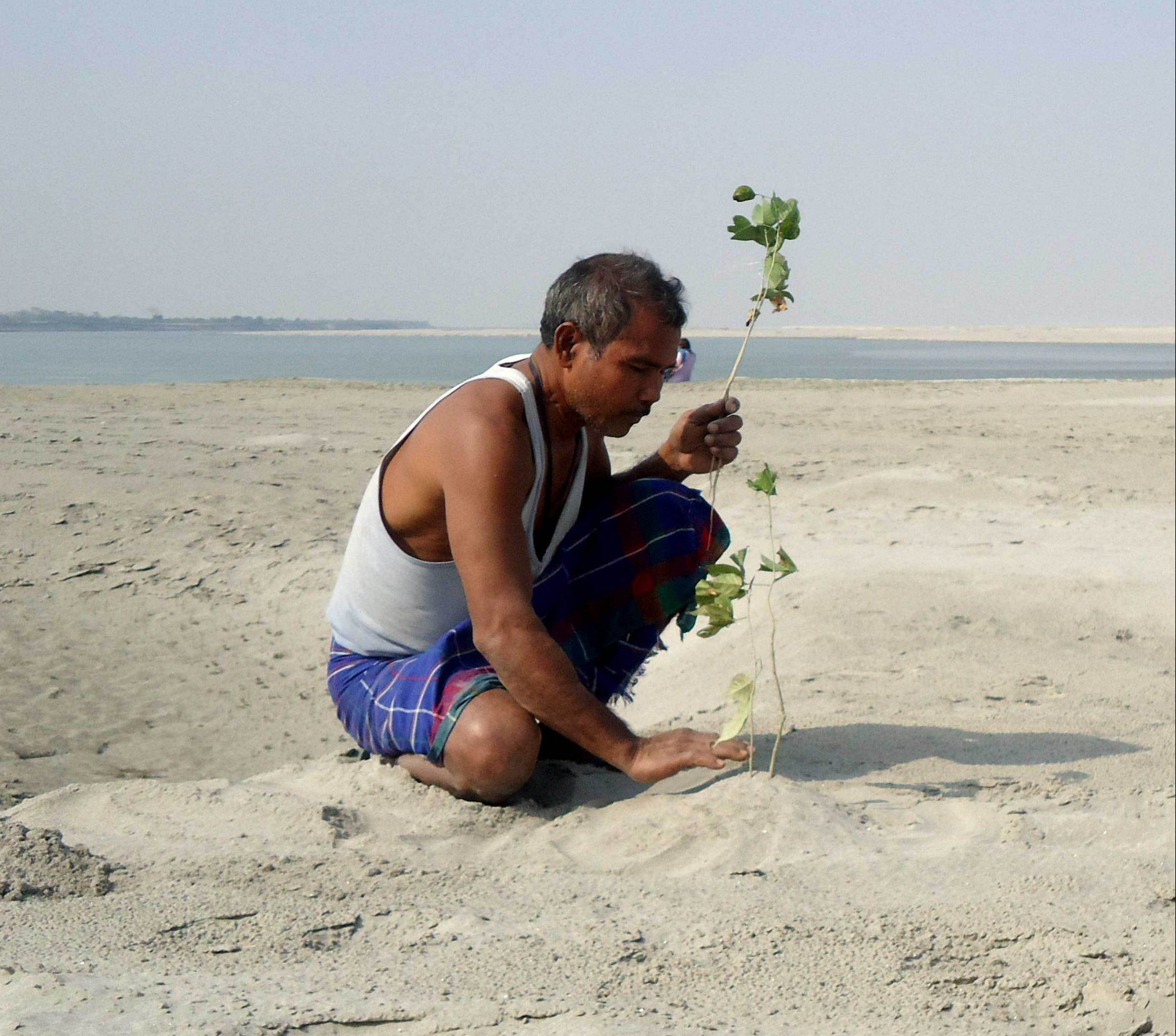 Forest Man of India, Jadav Payeng, palnting tree in his sandbar; Shutterstock ID 622849907; Purchase Order: -