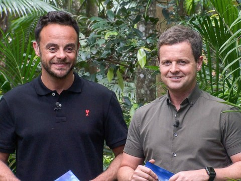 Dec Donnelly 'sad at the thought of being without his best friend' as Ant is confirmed to miss I'm A Celebrity