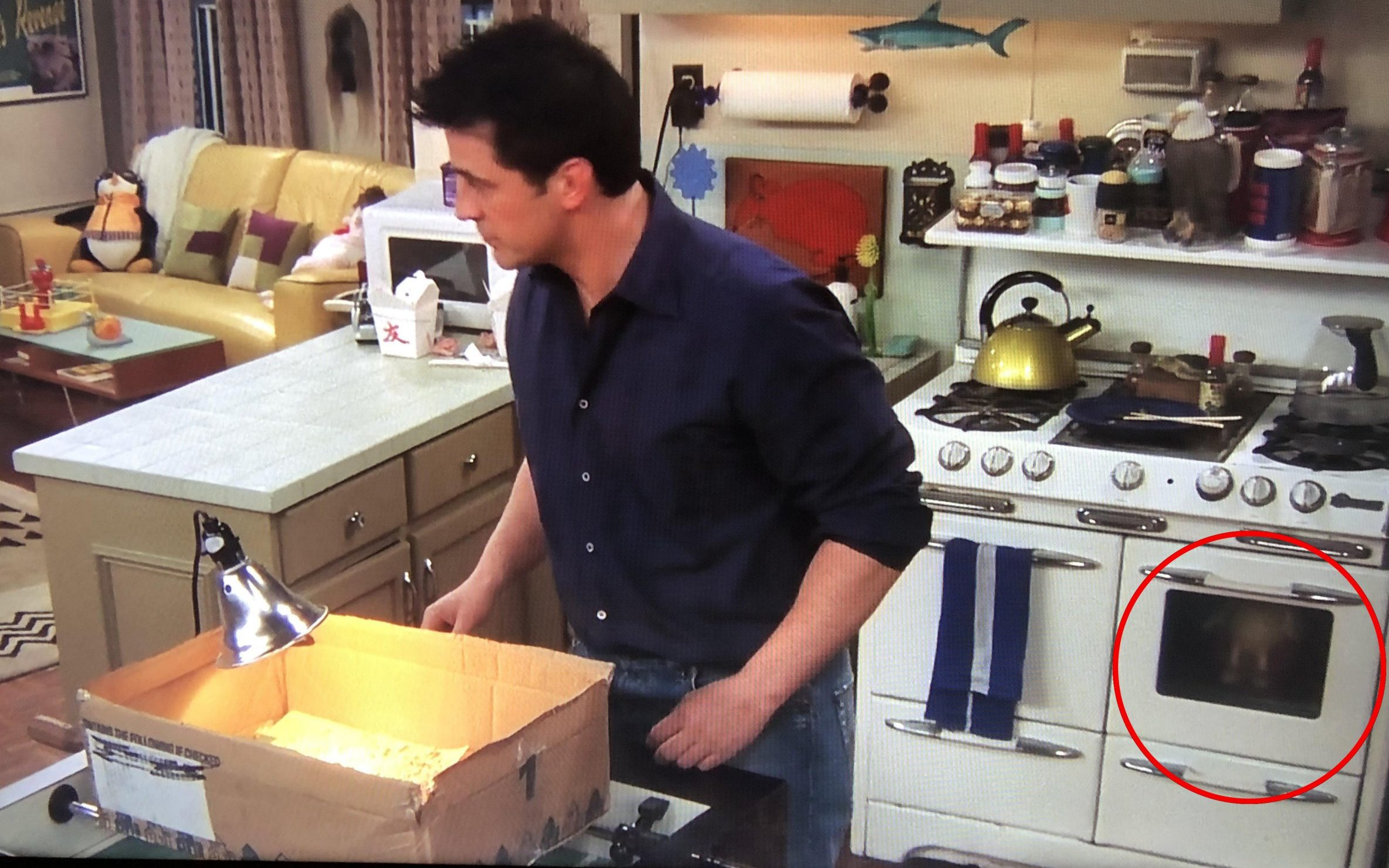 Joey Tribiani in Friends
