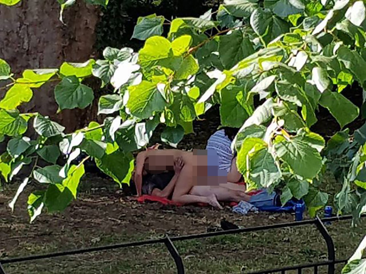 A shocked passer-by caught four people having an ORGY in the shadow of Cardiff Castle - in broad daylight.A graphic set of images captured by the eyewitness shows four people engaging in sexual activities in Bute Park at around 5pm yesterday [August 10].Caption: Four people were allegedly having sex in the ground of Bute Park, near Cardiff Castle, on August 10, 2018