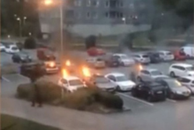 Dozens of cars were set alight and stones thrown at police as gangs of masked youths went rampaging across Sweden on Monday evening. Fires were reported in Malm?, Gothenburg and Helsingborg.