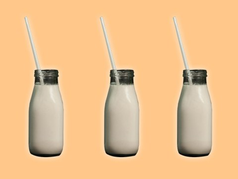 World Plant Milk Day: The definitive guide to dairy-free milk alternatives
