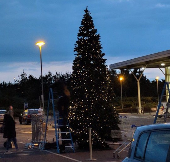 The Christmas tree put up in Tesco's in Cambridge. See Masons copy MNCHRISTMAS: Tesco's has become the first supermarket in the UK to put a Christmas tree up a staggering four months early. The supermarket appears to have delved straight into the festive spirit despite there being 118 days until the big day. Shoppers were stunned when they arrived to do their weekly shop and a 25ft decorated Christmas tree has appeared outside the store whilst summer is still in full swing.