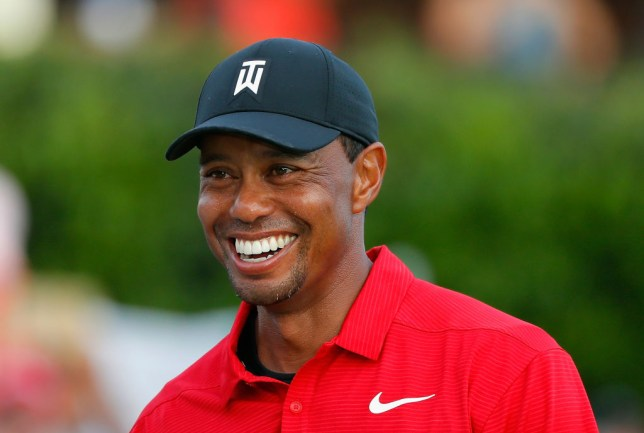 65d26933f707b Tiger Woods competes in his eighth Ryder Cup in 2018 (Picture  Getty Images)