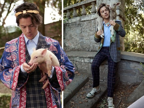 Harry Styles has an absolutely winning Gucci campaign as he teams up with cute farm animals