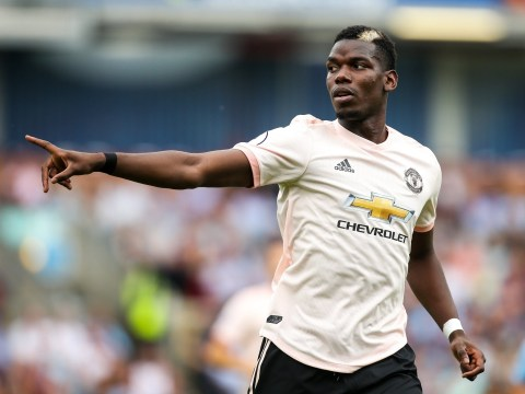 Andrea Pirlo would 'not be surprised' to see Paul Pogba back at Juventus